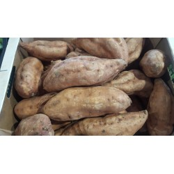 Patate douce  / 500 g