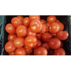 Tomate ronde  / 500 g